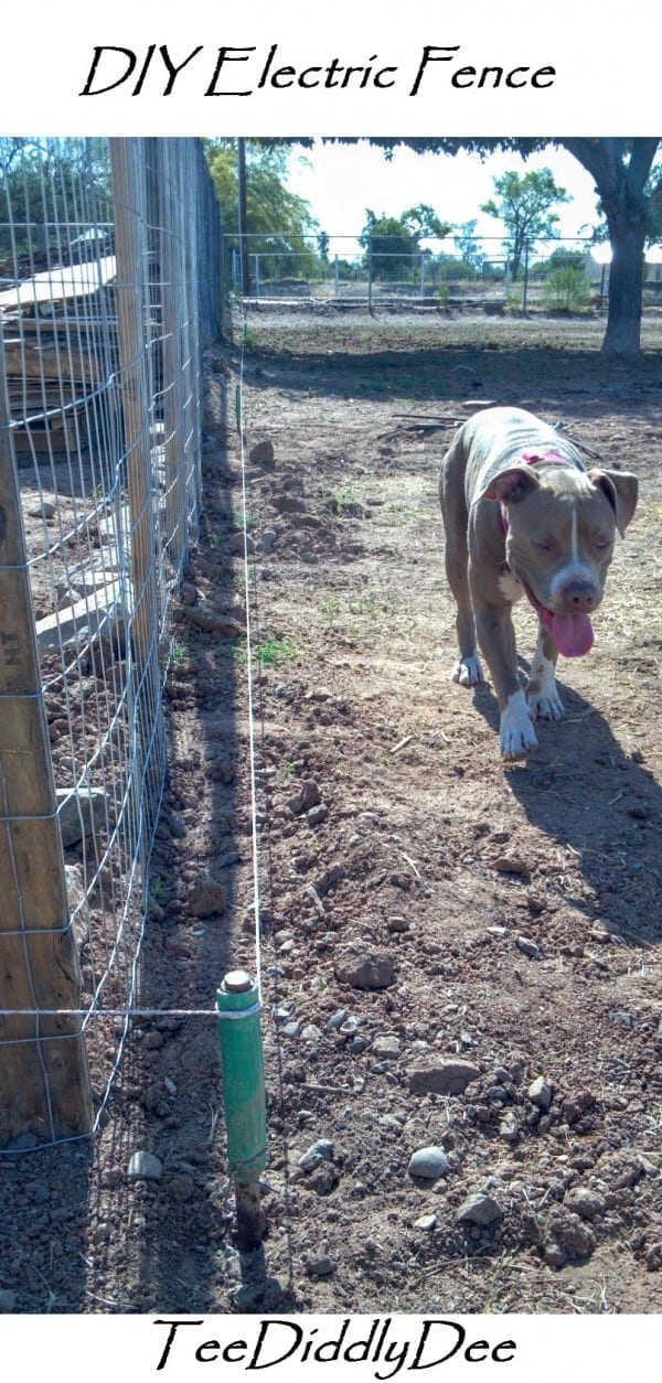 Picture of: Diy Electric Fence Hot Wire For Animals Part 1 Teediddlydee