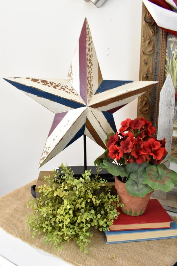 Close up of large patriotic wooden star with red geranium and green plant in front of it.